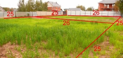 Землеустроительная экспертиза по разделу земельного участка