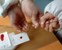 Экспертиза ДНК на отцовство для суда