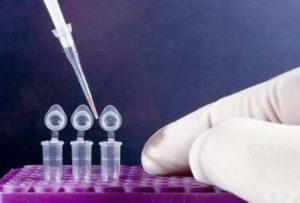Экспертиза ДНК в судебном порядке