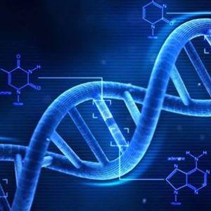 Судебная экспертиза ДНК