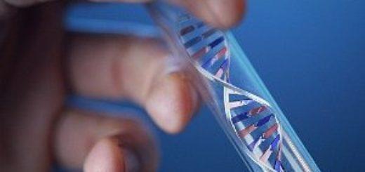 Судебная генетическая экспертиза на отцовство
