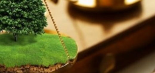 Земельная экспертиза для суда: цена