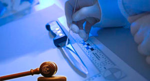 От чего зависят вопросы для судебной криминалистической экспертизы