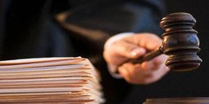 Основания и порядок назначения судебных экспертиз общая информация