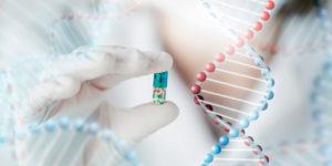Судебная молекулярно-генетическая экспертиза