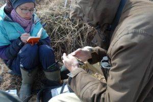 Орнитологическая экспертиза