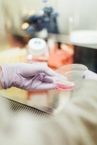 Оспаривание ДНК экспертизы: как это сделать