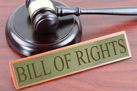 Виды правовой экспертизы правовых актов