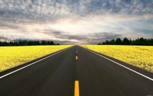 Строительная экспертиза дорог